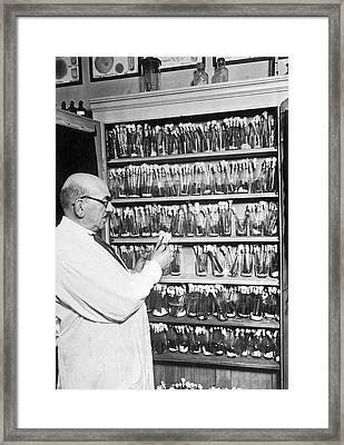 Billions Of Germs In A Closet Framed Print by Underwood Archives