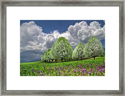 Billows Framed Print