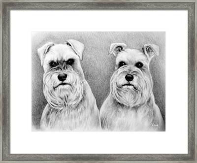 Billy And Misty Framed Print by Andrew Read