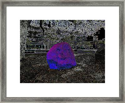 Billy Bob - Biscuit - By Framed Print by Kenneth James