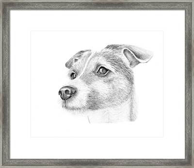 Billy Framed Print by Mary Mayes