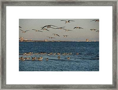 Biloxi Skyline Framed Print