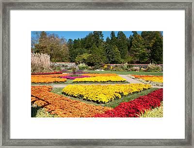 Biltmore Gardens  Framed Print by Lynn Bauer