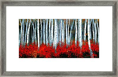 Birch 24 X 48  Framed Print by Michael Swanson