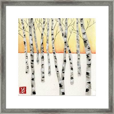 Birch At Sunrise Framed Print