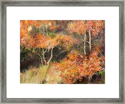 Birch Ballet Framed Print
