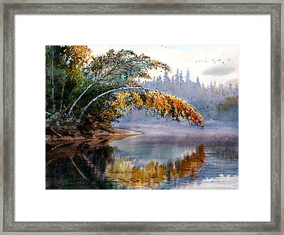 Birch Creek Beauty Framed Print by Vladimir Zhikhartsev
