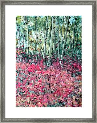 Birch Grove Framed Print by Joey Nash