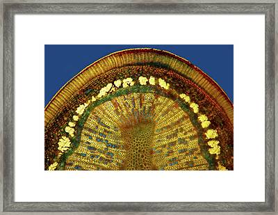 Birch Stem Framed Print