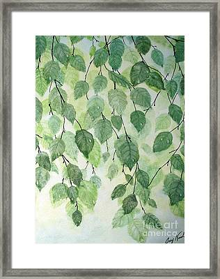 Birch Tears Framed Print by Joey Nash