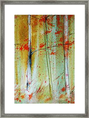 Birch Tree Forest Closeup Framed Print by Jani Freimann