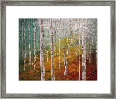 Birch Trees #4 Framed Print