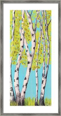 Birch Trees Framed Print by Anastasiya Malakhova