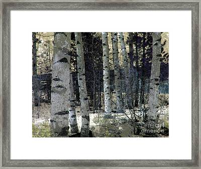 Framed Print featuring the photograph Birch Trees In Snow  by Irina Hays