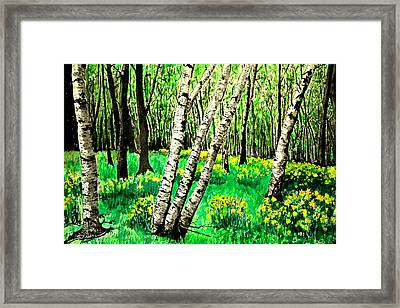Birch Trees In Spring Framed Print by Diane Merkle