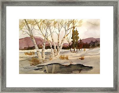 Birch Trees Framed Print by Larry Hamilton