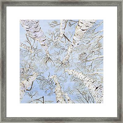 Birch Trees Framed Print by Leo Gehrtz