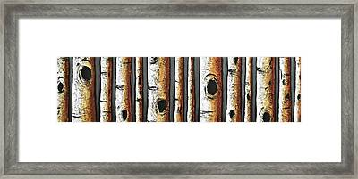 Birches A Touch Of Red Framed Print by Lori McPhee