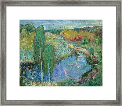 Birches Framed Print by Evgen Bondarevskiy