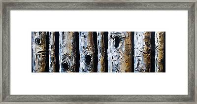 Birches In A Row Framed Print by Lori McPhee