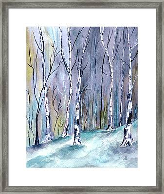 Birches In The Forest Framed Print