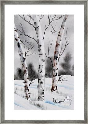 Birches Framed Print by Mohamed Hirji