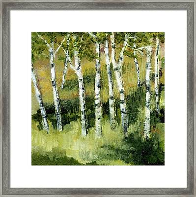 Birches On A Hill Framed Print by Michelle Calkins