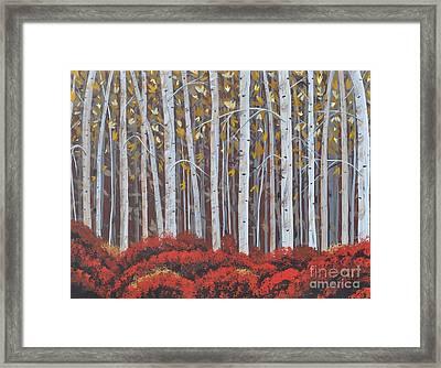 Birches Framed Print by Sally Rice