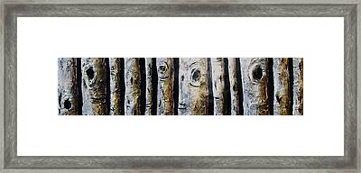 Birches Standing Before You Framed Print by Lori McPhee