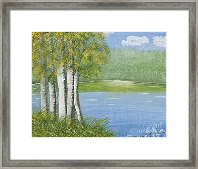 Birches By The Lake Framed Print