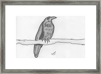 Bird 2 Framed Print