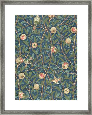 Bird And Pomegranate Framed Print by William Morris
