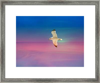 Framed Print featuring the photograph Bird At Sunset by Athala Carole Bruckner