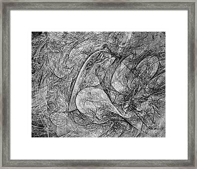 Bird B-w 625 - Marucii Framed Print