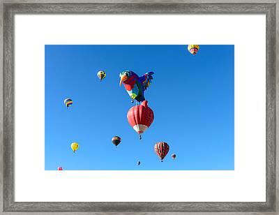 Bird Balloon Framed Print