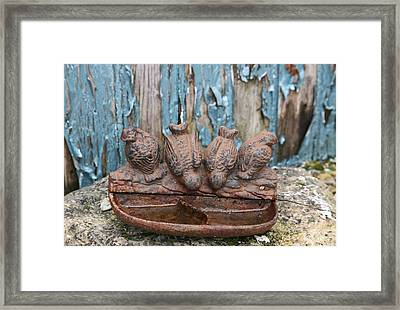 Framed Print featuring the photograph Bird Bath by Lynn England