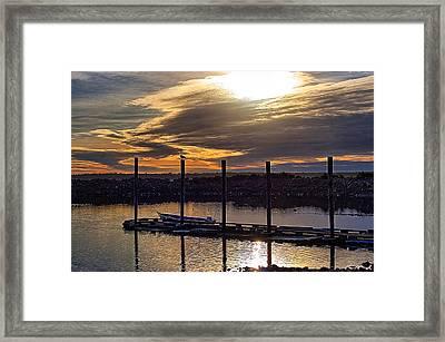 Bird - Boat - Bay Framed Print