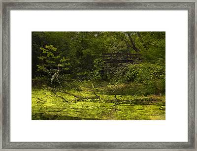 Bird By Bridge In Forest Merged Image Framed Print by Thomas Woolworth