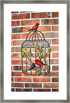 Bird Cage Decor Framed Print