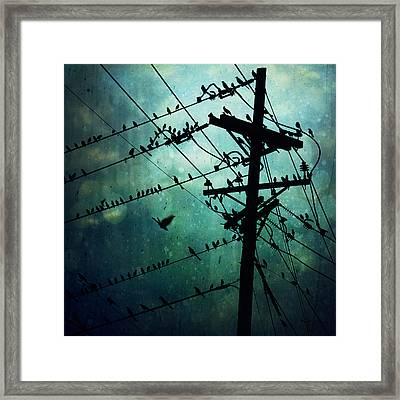 Bird City Framed Print