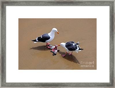 Bird Eats Bird Framed Print