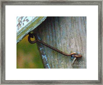 Bird Feeder Locked Memory Framed Print by Brenda Brown