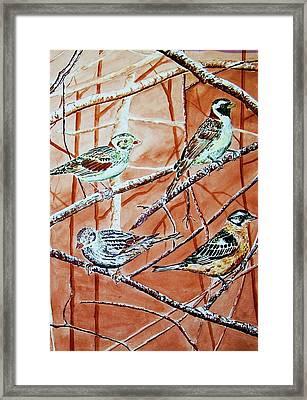 Bird Foursome Framed Print by Linda Vaughon