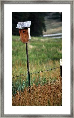 Framed Print featuring the photograph Bird House 40 by Amee Cave