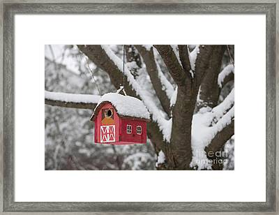 Bird House On Tree In Winter Framed Print by Elena Elisseeva