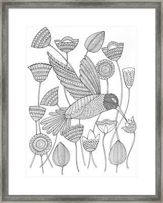 Bird Hummingbird 2 Framed Print by Neeti Goswami