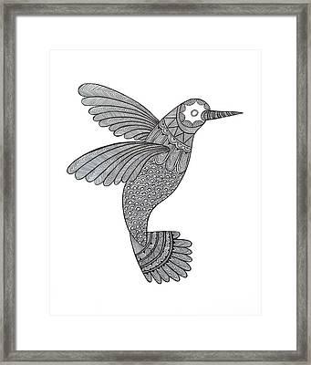 Bird Hummingbird Framed Print