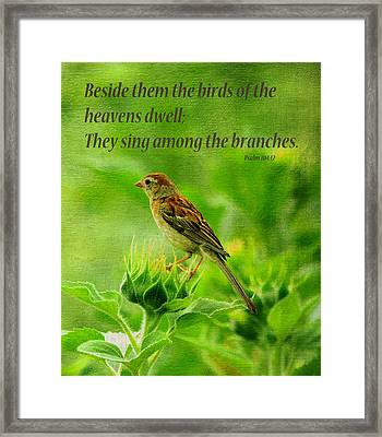 Bird In A Sunflower Field Scripture Framed Print by Sandi OReilly