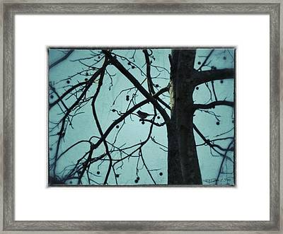 Framed Print featuring the photograph Bird In Tree by Tara Potts