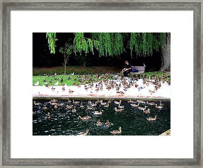 Bird Man Framed Print by Will Borden